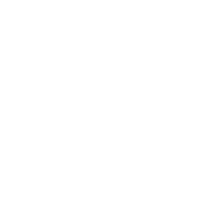 Norse Brewing Company